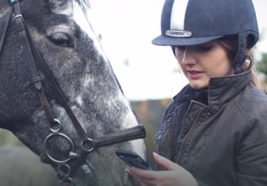 Equus England launch CrowdCube Campaign